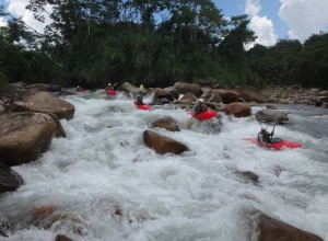 A group of five kayakers going through white water rapids.