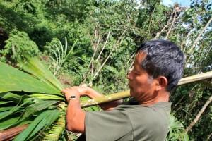 Eduardo Senior weaving palm leaves.