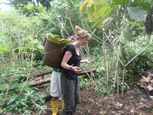 A volunteer helping on the farm carrying a basket of produce on her head.