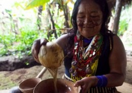 A spiritual leader from the Kichwa community making medicine.